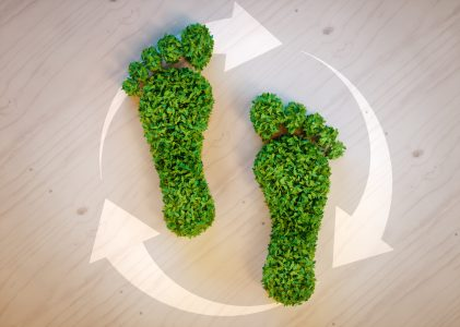 green footprints made out of plants