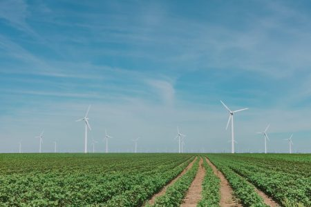 field of windmills as alternative energy