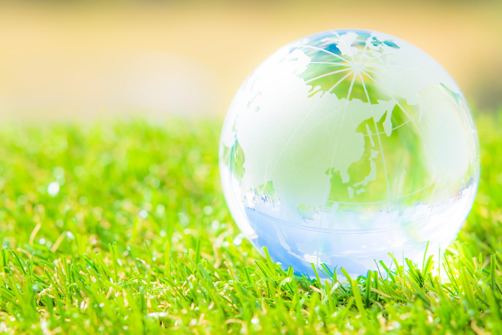 environmental cleanup companies