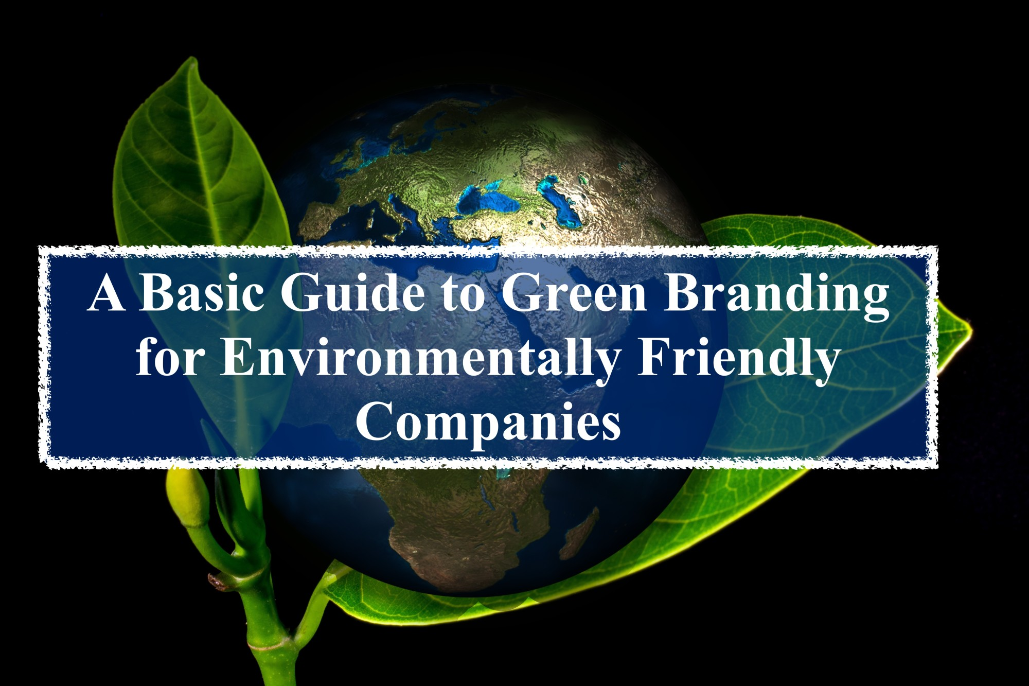 Green BrandingMessage