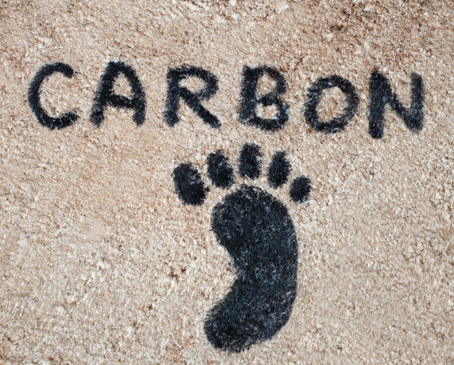 carbon footprint facts