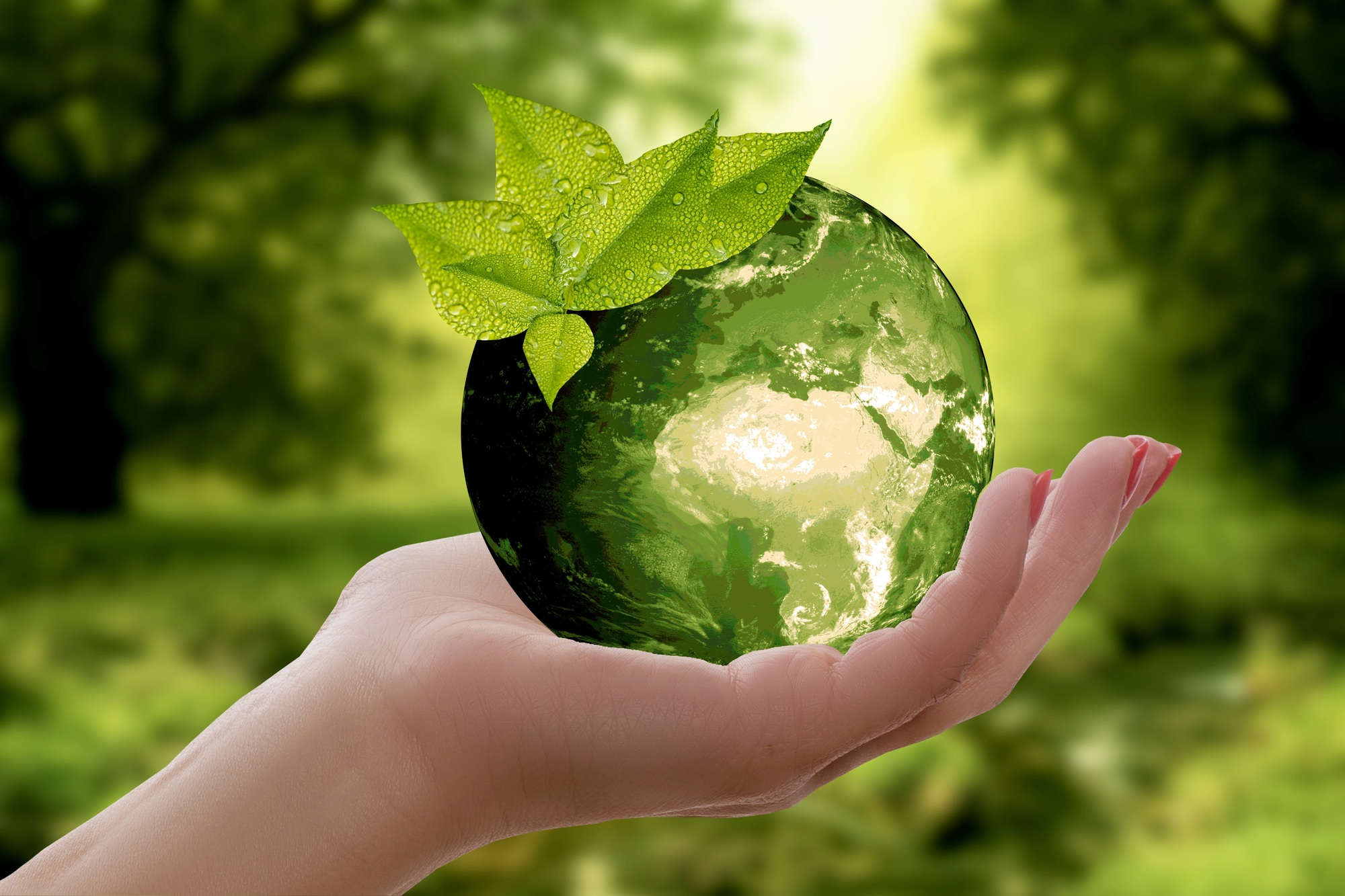 Reduce Reuse Recycle: Tips to Inspire Your Family to Go Green in ...