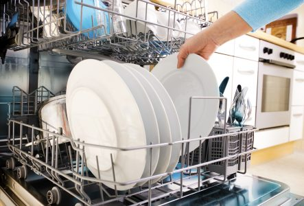 eco friendly dishwasher